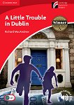 Cambridge Experience Readers - Ниво 1: Beginner/Elementary : A little Trouble in Dublin - Richard MacAndrew -