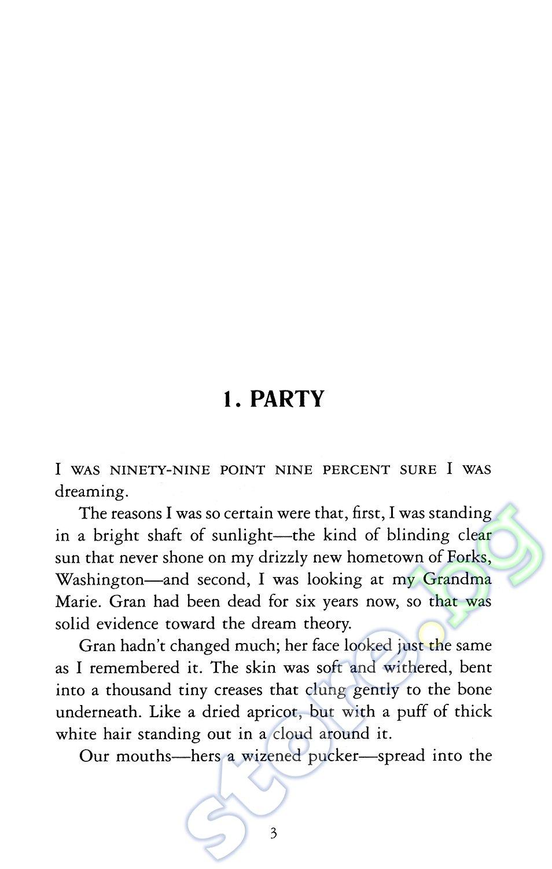 essay book new moon